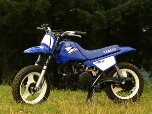YamahaPW50